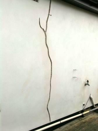 Cracked Walls Can Cost You Money If Not Fixed Never