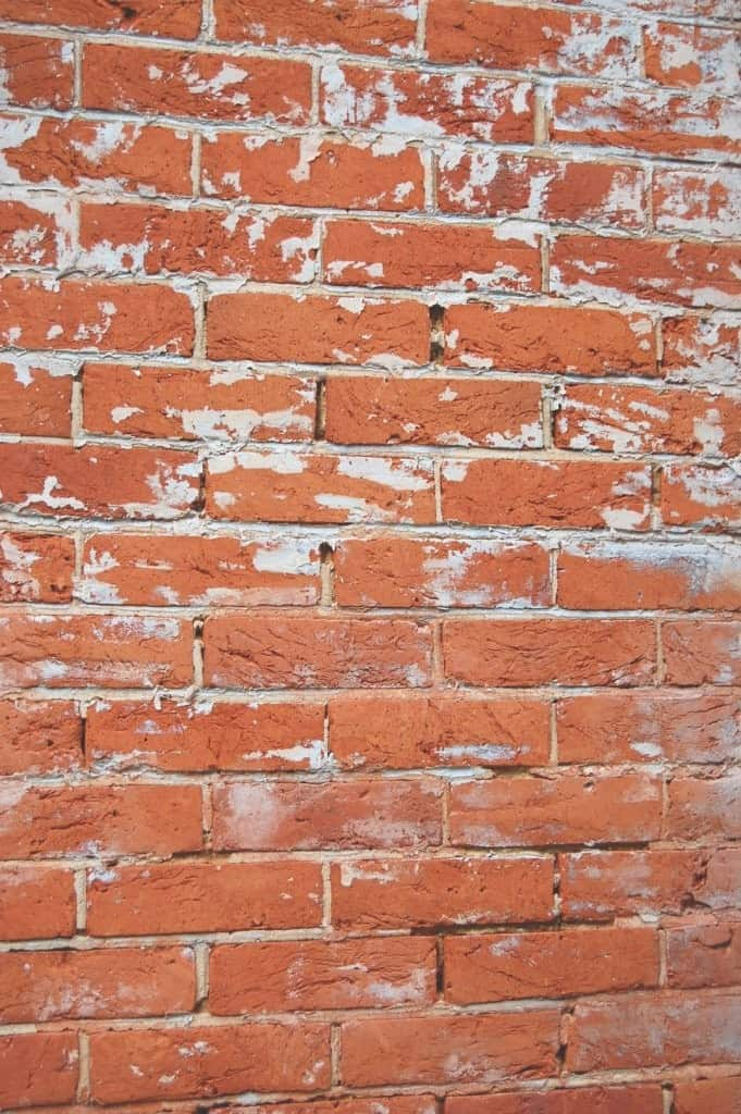 porous bricks let damp into the wall