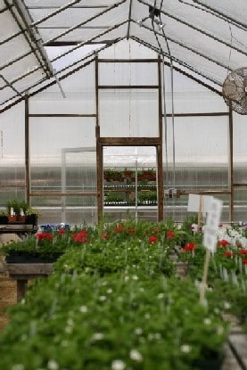 greenhouses not the only place for greenhouse gas