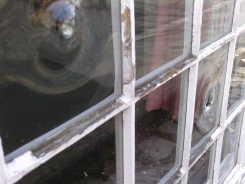 Single glazing ensures maximum heat loss