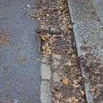 KERB APPEAL Fallen leaves can block street drains