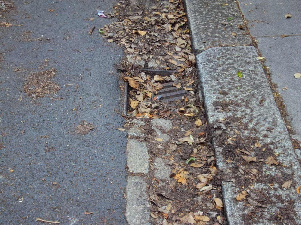 Fallen leaves can block street drains
