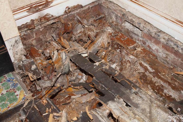 dry rot damage to timber