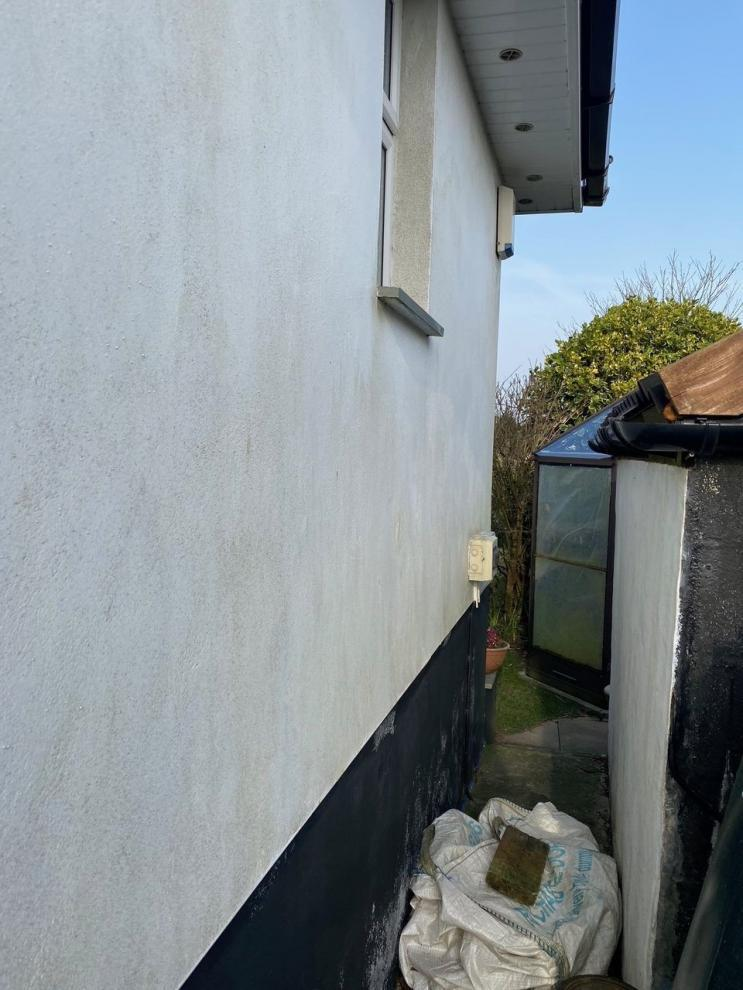 he walls of the house were green and mouldy before it had a wall coating